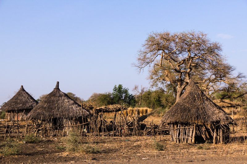 Traditional hut houses Ethiopia