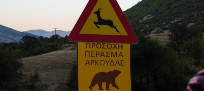Greece #1 – Bear Country and Freddo Espressos